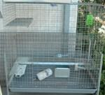Wire cage 24 x 36 x 36 high condo w/ slide out Dura tray